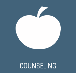 COUNSELING SERVICES BFIS INTERNATIONAL SCHOOL BARCELONA